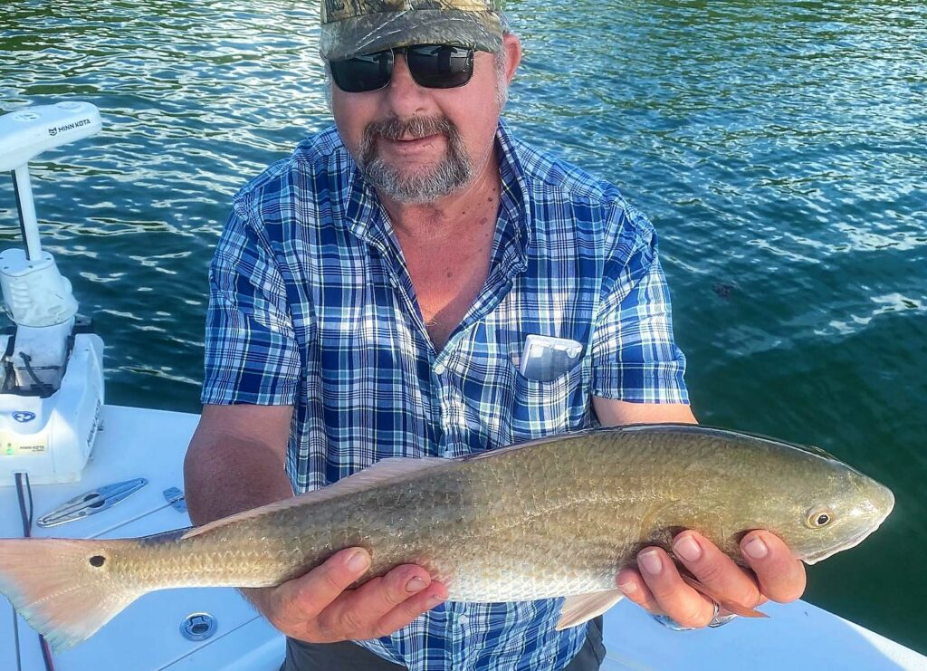 A picture of Red October: Why Fall Redfish Are So Popular In St. Pete on one of our St. Petersburg Fishing Charters
